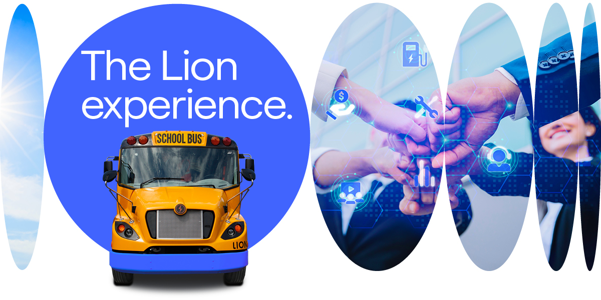 Lion Experience Bus